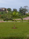 Pictures of Yaounde Photos