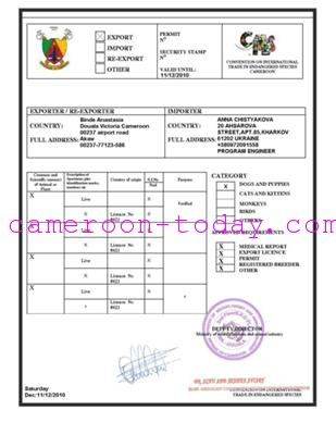 Cameroon Puppy Dog Scam Fraud