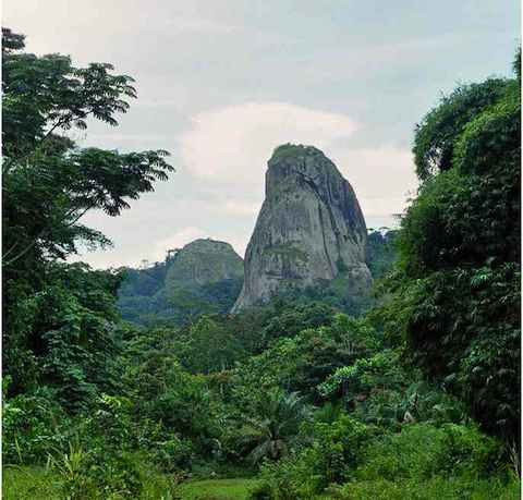 The Atlantic Evergreen Forest of Ebolowa Cameroon