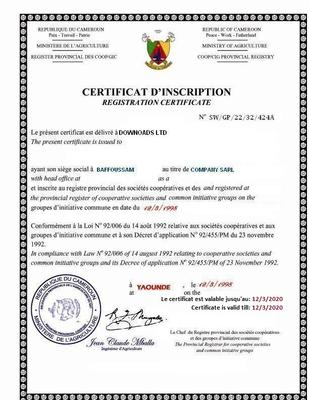 Downoads LTD is a fake Cameroon Company Beware!!!
